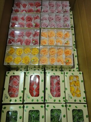 Оптовые продажи цветов в санкт петербурге #6