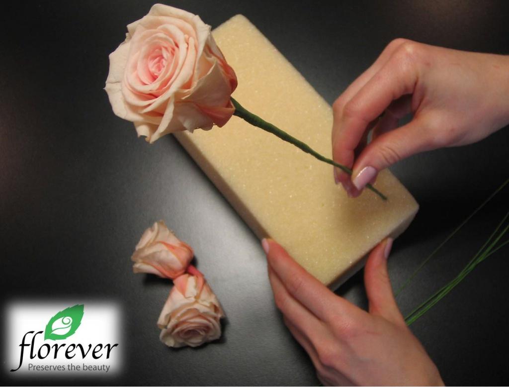 Стабилизированные цветы своими руками мастер 214