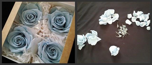 Стабилизированные цветы своими руками мастер 491